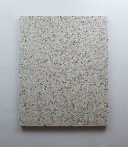 Alfredo Gallegos Data I, 2019 Técnica mista 100x80x4 cm